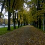 Toamna in Bucuresti