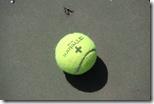minge de tenis tretorn plus