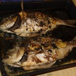 Dorada in oven with Mediterranean sauce