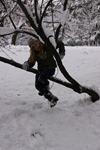 cata iarna prin parc
