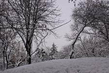 iarna cu zapada prin parc