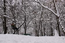peisaj de iarna in parc