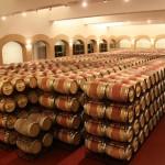 Cum se face vinul la o ferma viticola din Spania