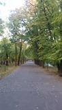 toamna prin parc