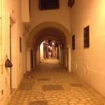 Tunis, pe scurt