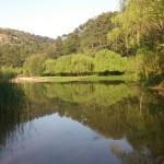 Magical lake in the forest, Thassos – Greece