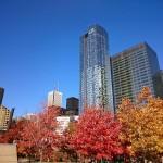 In Toronto printre zgaraie nori